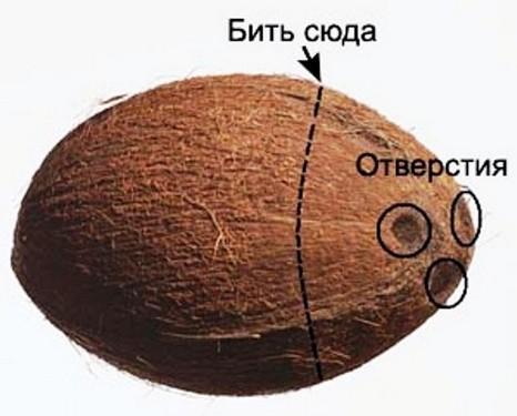 Как вскрыть (разбить, расколоть) открыть кокос - Видео-урок
