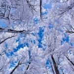 Какой будет зима 2017-2018 года в России?