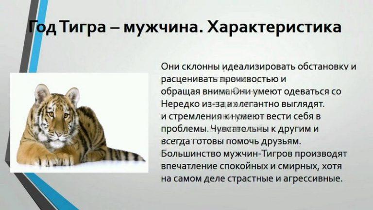 Львы-тигры женского пола также обладают тщеславностью и высокомерием, но в меньшей степени, че.